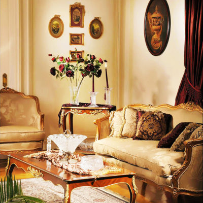 French style design living room 3
