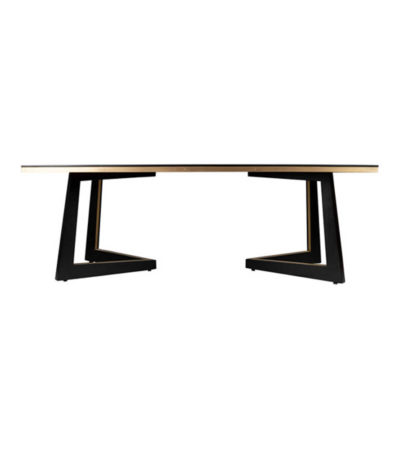 Rion-Dark-Brown-Wood-and-Brass-Coffee-Table-Front-View